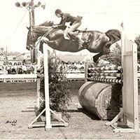 Angus Acres Horse Farm