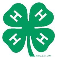 4-H STEM in Tennessee