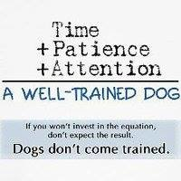 Pet and Praise Obedience