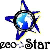 Ecostar Cleaning and Carpet Care