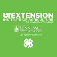 UT/ TSU Extension Meigs County