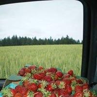 Mark's NW Fresh Produce