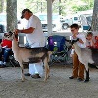 Ossipee Valley Fair