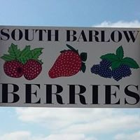 South Barlow Berries