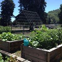 Woolley Center Learning Garden