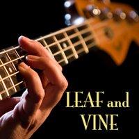 Leaf and Vine