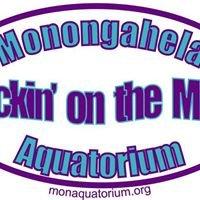 Monongahela Aquatorium