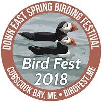 Down East Spring Birding Festival