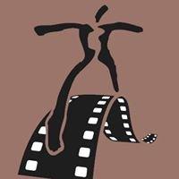 TAC International Film Festival