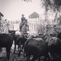 6 Ranch