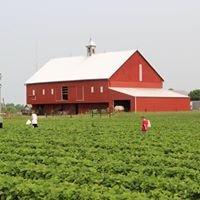 Hann Farms