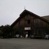 Cypress Flower Farm