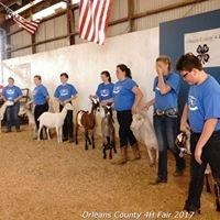 Orleans County 4H Fair
