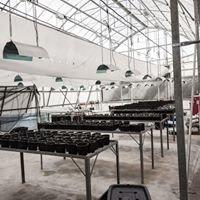 Glasshouse Nursery-CPUT