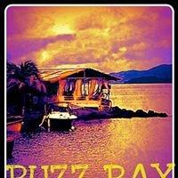 Buzz Bay