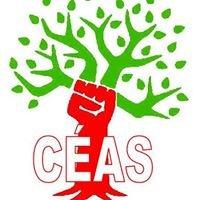 Comité d'Écologie et d'Actions Sociales du Cégep de Victoriaville