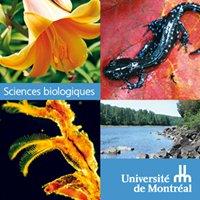 Département de sciences biologiques - Université de Montréal