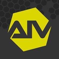 AIV - Accademia Italiana Videogiochi