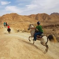 Desert Trail Riding Adventures