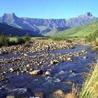 Drakensberg Experience - Best of the Berg