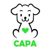 CAPA - Clube de Adopção e Protecção de Animais da Póvoa de Lanhoso