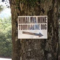 Himalaya Tourmaline Mine