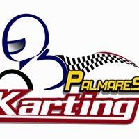 Palmares Karting