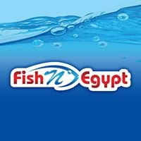 Fishnegypt Fishing Tackle