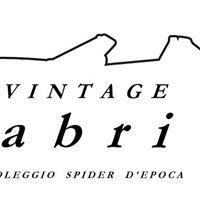 Vintage Cabrio                  dream&motion     Classic Car Rental