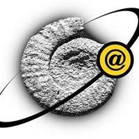 Fossilplanet.com