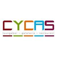 CYCAS Café & Restaurant