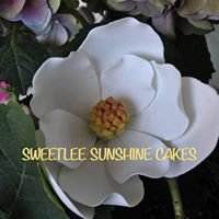 Sweetlee Sunshine Cakes