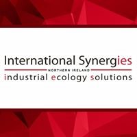 International Synergies NI