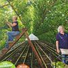 Druivenkwekerij Nieuw Tuinzight