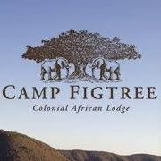 Camp Figtree