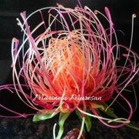 Sugar flowers made by Marinela Muresan