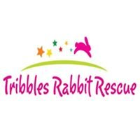 Tribbles Rabbit Rescue