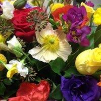 flowers of adelaide