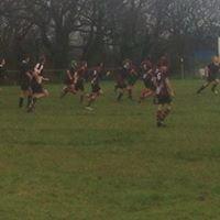 Hayle Rugby Club