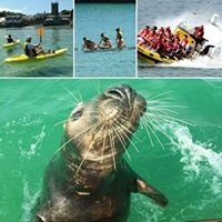St Ives Boat Rides