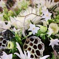 Poppy & Dove Floral