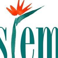 Stem. Flowers by Mandy MacPherson