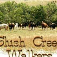 Slush Creek