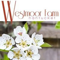 Nantucket Westmoor Farm
