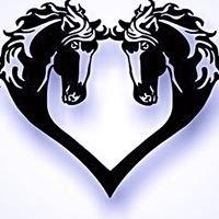 Equus America