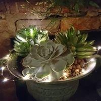 Stephanie Randall The Flower Studio