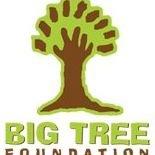 Big Tree Foundation