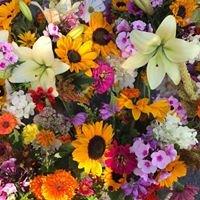 Omena Cut Flowers U-Pick Flower Farm