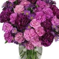 International Floral Distributors