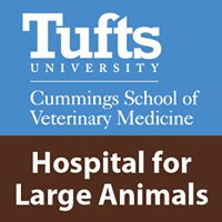 Hospital for Large Animals